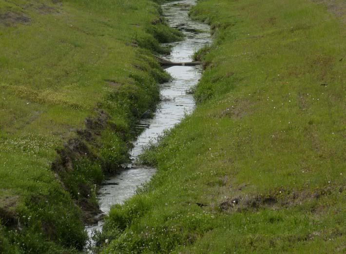 Осушение открытыми канавами
