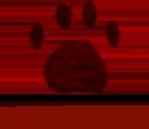Логотип сайта Природа мира